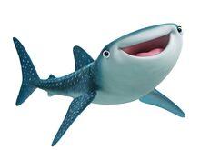 Finding-dory-kaitlin-olson-destiny-whale-shark