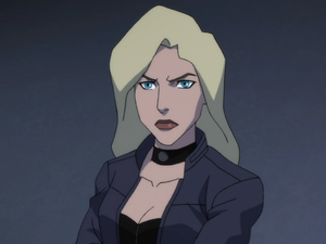 Black Canary 2019 Young Justice