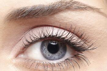 Gray-Eyes