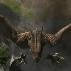 The Dragon flying.