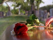 Andy cercueil 122