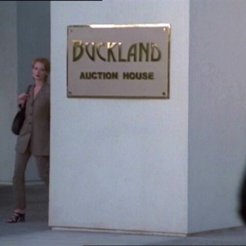 The entrance to Buckland's