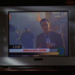 TV Reporter (<a href=