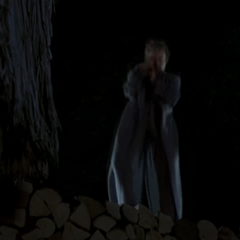 Cree levitates onto a wood pile.