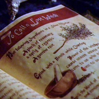 The entry in the Book of Shadows.