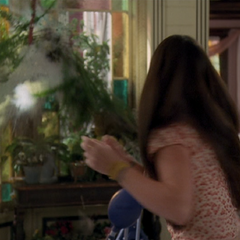 Piper accidentally blows up a flower pot.