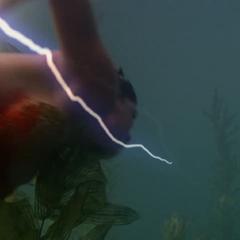 Necron using Electrokinesis to attack Phoebe.