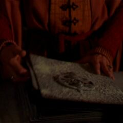 A Dark Priest holding the Grimoire