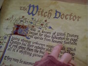 WitchDoctorEntry 1