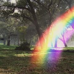 Seamus using Rainbow Teleportation with Paige.