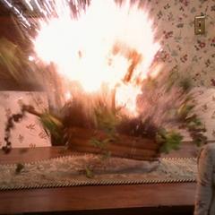 An energy ball destroys a bouquet.