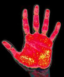 File:Roxy's Hand.jpg