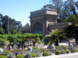 Golden-gate-park14