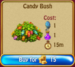 Candy bush
