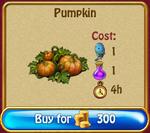 Pumpkin4h