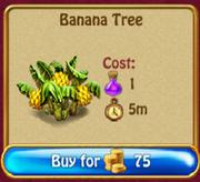 BananaTreeS1