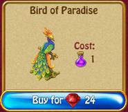 Bird of paradise r360