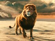 Aslan-lion-3-Chronicles-of-Narnia-Voyage-of-the-Dawn-Treader-wallpaper