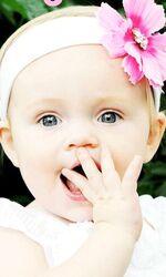 Anna baby