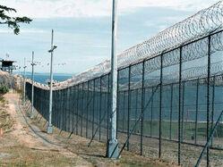 Concentration Border