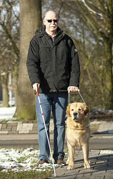 Blind person with his guide dog