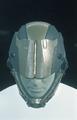 ORC-mkX Helmet Woodland