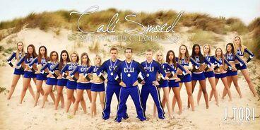Smoed 2013 champions