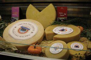 Tibetan yak cheese