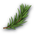 File:Ingredient-Rosemary.png