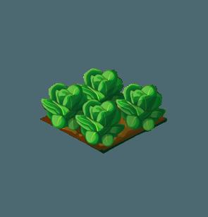 File:Crop-Lettuce.png