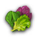 File:Ingredient-Salad Greens.png