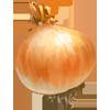 Ingredient-Wild Onion