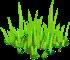 Decoration-Green Grass