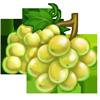 Ingredient-White Grape