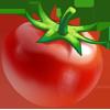 Ingredient-Tomato