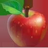 Ingredient-Apple