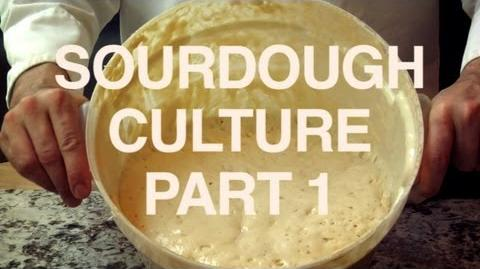 Mockumentary Ep. 9 - Sourdough Culture (Part 1) - JV Pizza Recipe