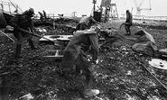 Chernobyl 31
