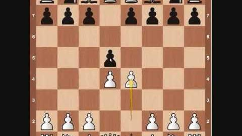 Chess Basics- Pawn Overview