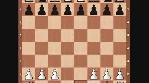 Chess Basics- Rook Overview