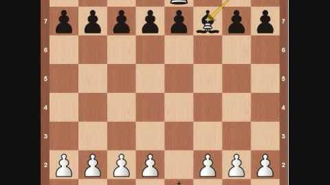 Chess Basics- King Overview