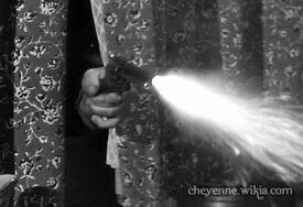 Thespanishgrant-shotfromthewindow-cheyenne