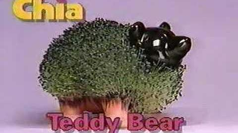 Original Chia Pet Commercal-0