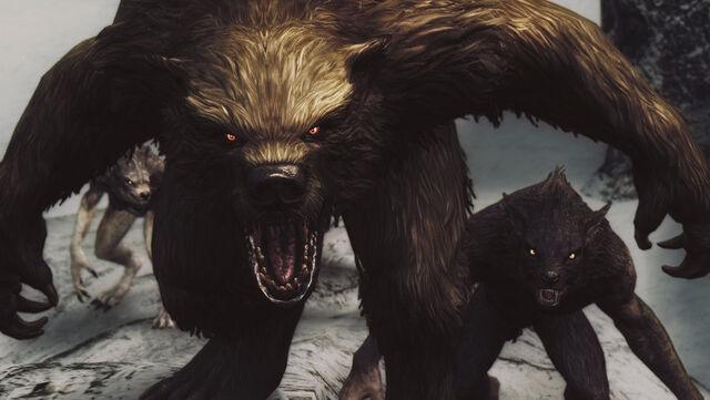 File:Werebear rage by skyscreenie-d7394ny.jpg