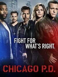 ChicagoPDPoster4