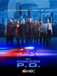 ChicagoPDPoster7