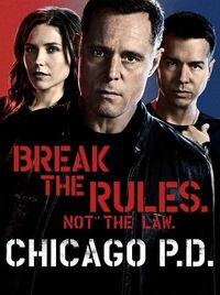 ChicagoPDPoster2