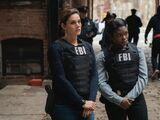 Ties That Bind (FBI)