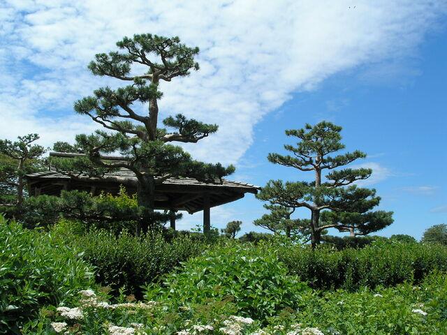File:CBG Japanese Garden 1.jpg