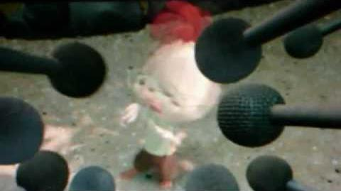 Chicken little opening cooking